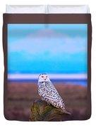 Snow Owl At Sunset Duvet Cover