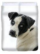Snow Puppy Duvet Cover