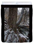 Snowbark Duvet Cover
