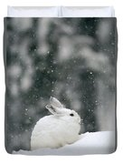 Snowshoe Hare In Snowfall Yellowstone Duvet Cover
