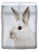 Snowshoe Hare Pictures 128 Duvet Cover