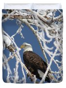 Snowy Bald Eagle Duvet Cover