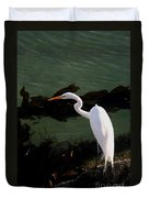 Great Egret Monterey Bay California  By Pat Hathaway Duvet Cover