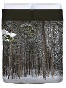 Snowy Forest In Acadia Duvet Cover