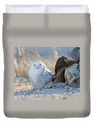 Snowy Owl Among The Rocks Duvet Cover