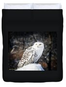 Snowy Owl Cold Stare Duvet Cover