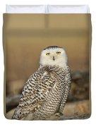 Snowy Owl Female Duvet Cover