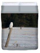 Snowy Owl Landscape Duvet Cover