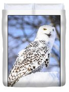 Snowy Owl Look Out Duvet Cover