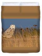Snowy Owl Morning Duvet Cover