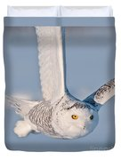 Snowy Owl Pictures 47 Duvet Cover