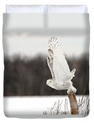 Snowy Owl Pictures 80 Duvet Cover