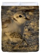 Snowy Plover Transformation Into A Spiderbird 1 Duvet Cover