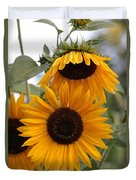Soft Colors Sunflowers Duvet Cover