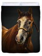 Soft Focus Horse Duvet Cover