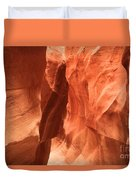 Soft Sculpted Sandstone Walls Duvet Cover by Adam Jewell