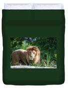 Solemn Lion Duvet Cover