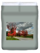 Some Fall Colors Duvet Cover