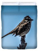 Song Sparrow On Top Of Branch Duvet Cover