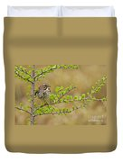 Song Sparrow Pictures 111 Duvet Cover