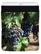 Sonoma Vineyards In The Sonoma California Wine Country 5d24630 Square Duvet Cover