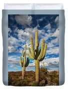 Sonoran Desert Beauty Duvet Cover