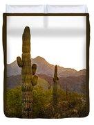 Sonoran Desert II Duvet Cover by Robert Bales