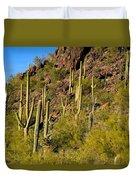 Sonoran Desert West Saguaro National Park Duvet Cover