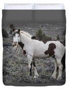 South Steens Wild Stallion Duvet Cover
