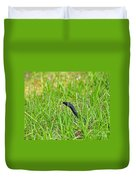 Southern Black Racer Duvet Cover by Al Powell Photography USA