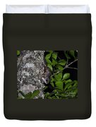 Southern Flying Squirrel Duvet Cover