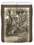 Southern Lane Sepia Duvet Cover by Steve Harrington