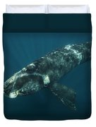Southern Right Whale Calf Valdes Duvet Cover