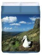 Southern Royal Albatross Duvet Cover