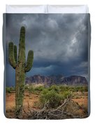 Southwest Monsoon Skies  Duvet Cover