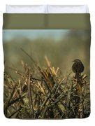 Sparrow Watch  Duvet Cover