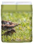 Sparrows Duvet Cover