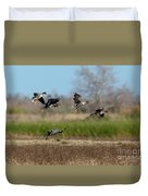 Speckled Belly Geese Landing Duvet Cover