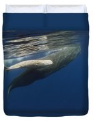Sperm Whale Mother And Albino Baby Duvet Cover
