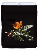 Sphaeralcea Ambigua Duvet Cover
