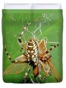 Spider Eating Moth Duvet Cover