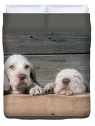 Spinone Puppies Duvet Cover