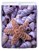 Spiral Shells And Starfish Duvet Cover
