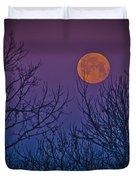 Spooky Beauty Duvet Cover