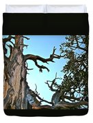 Spooky Bristlecone Pine At Spectra Point On Ramparts Trail In Cedar Breaks National Monument-utah  Duvet Cover