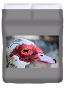 Spotted Feathers Duvet Cover
