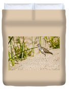 Spotted Sandpiper Pictures 45 Duvet Cover
