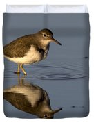 Spotted Sandpiper Reflection Duvet Cover