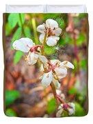 Spotted Wintergreen On Horseshoe Lake Trail In Denali Np-ak - Duvet Cover