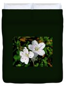 Spring Beauty Wildflowers - Claytonia Virginica Duvet Cover